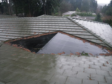 "This is usually a defect that is either built into a house or results from significant additions. These ""pinch points"" on the roof will easily trap organic debris (leaves, branches, pine needles etc.) and will cause moisture to collect on the roof."